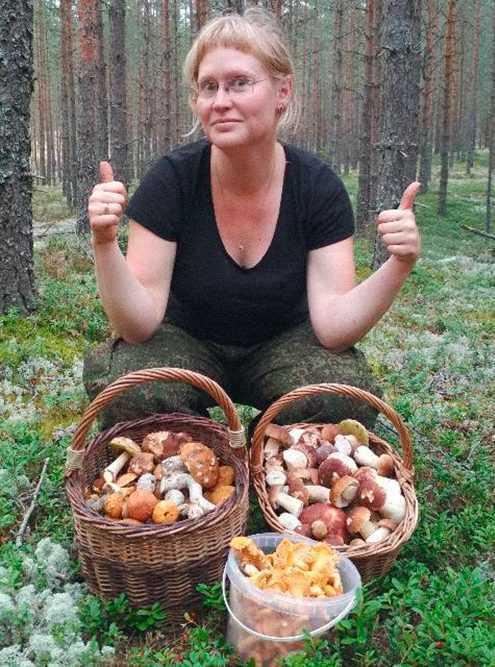 Личный опыт: я зарабатываю на лесных грибах до 100 тысяч рублей