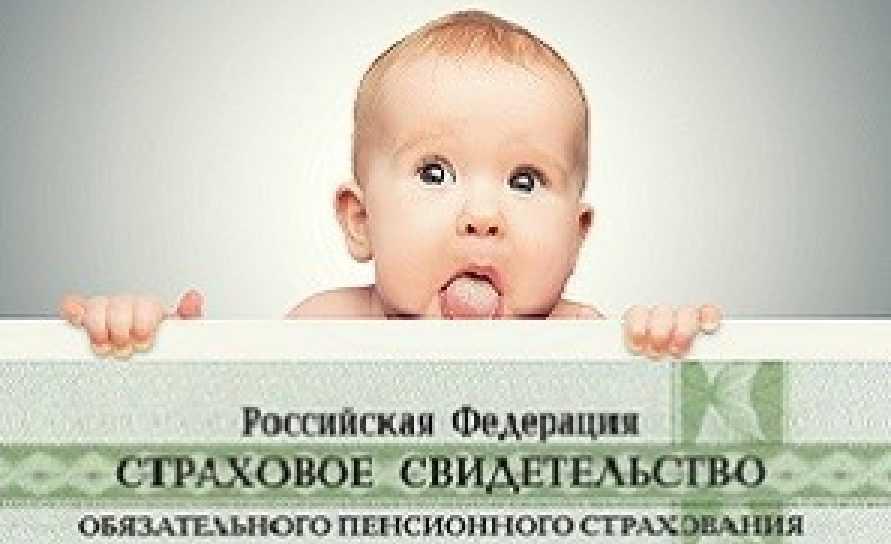 Как оформить для ребенка страховой номер?